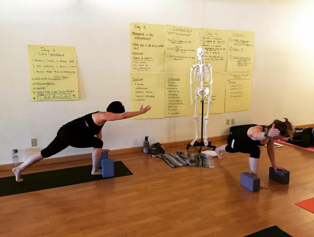 Teaching the Yoga Tune Up Level 1 Teacher Training