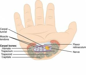 Self-Care Fixes for Carpal Tunnel and Wrist Pain - AE Wellness