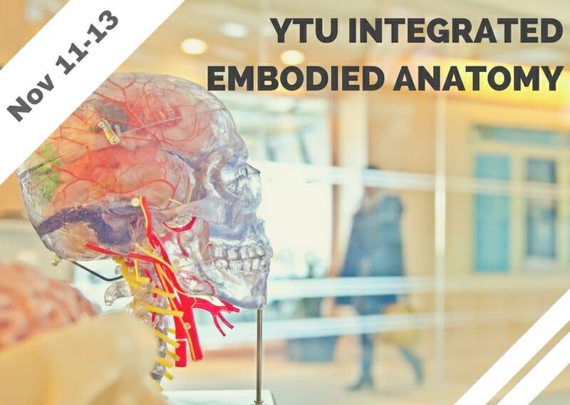 Nov 11-13 – YTU Integrated Embodied Anatomy (Tarzana, CA)