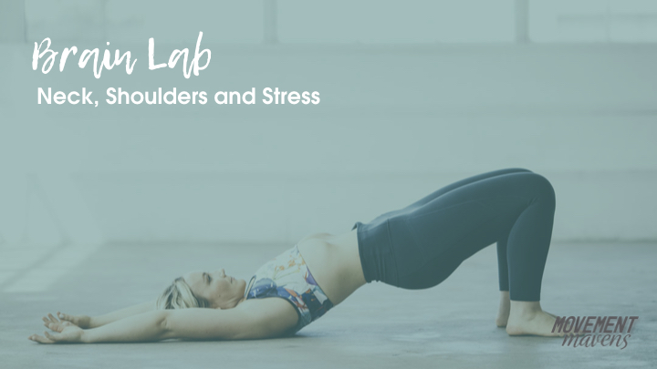 November Brain Lab – Neck, Shoulders and Stress