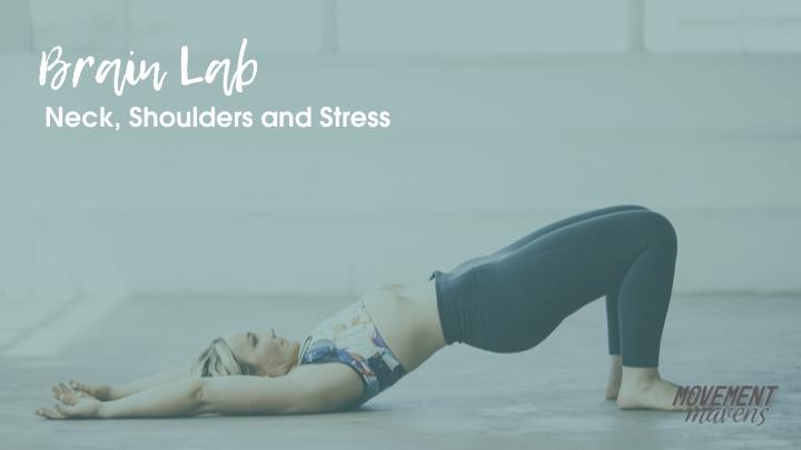 November Brain Lab – Neck, Shoulders and Stress