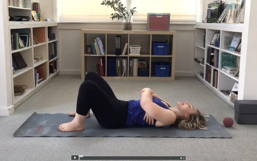 Posture Rehab Therapy Balls